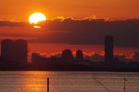 行徳港の日の出